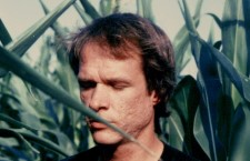 Let's Go Swimming: Peter Broderick interpreta a Arthur Russell